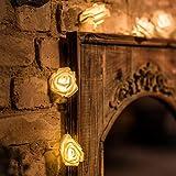 LED Rosen Lichterkette - 5 Meter Gesamtlänge | 20 LEDs warm-weiß - kein lästiges austauschen der Batterien | NICHT batterie-betrieben sondern mit Netzstecker | von CozyHome