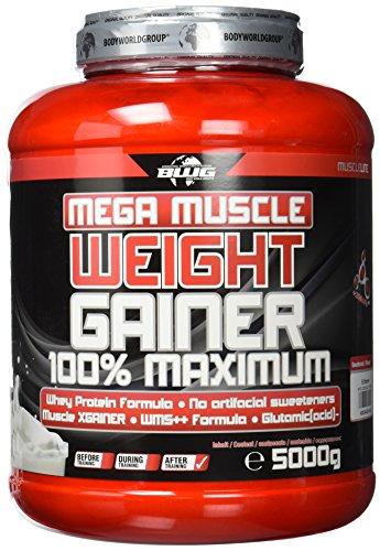 BWG Mega Muscle Weight Gainer 100{2f842b753811f7f16139404e25bf2d6a2082d9b66275dd1159b13f8e5bf6cfcc} Maximum - perfekt für HardGainer und Massephasen - Kraftaufbau - Mega Strawberry - Dose mit Dosierlöffel - (1x 5000g Dose)