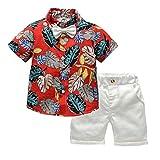 EUCoo_ Kinder Männlich Baby Kinderbekleidung 1-5 Jahre Kurzarm einfarbig Fliege Hawaii-Stil Hemd Strickjacke + einfarbig Shorts Gentleman Set(rot, 100)