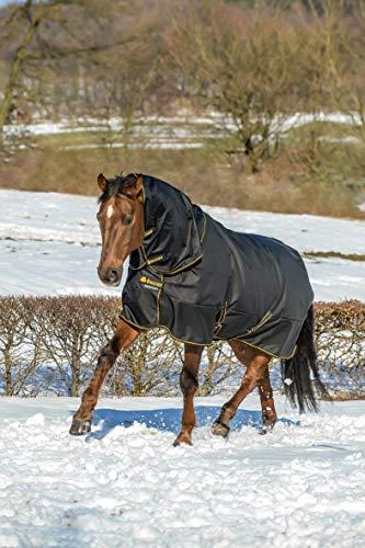 Bucas Irish Turnout Combi Neck, Halsteil, Schwarz/gold, Grösse XL (Rückenlänge 155 cm)