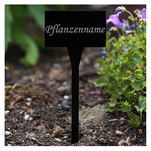 Verre acrylique Panneaux de plantation carré noir - Jardin/connecteur, herbes, panneaux, plante - Choix + nom au choix Stevia