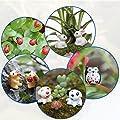 Paxcoo 87 Stück Miniatur Ornament Kit Set Mit 1 Stück Pinzette für DIY Fairy Garten Dollhouse Dekor von PAXCOO bei Du und dein Garten