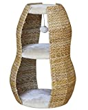 Nobby 63276-92 Kratzbaum Akaba, beige