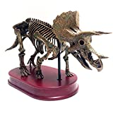 LUCKFY Dinosaurier-Skelett Replica-Modell - Starten Sie Ihr eigenes Dinosaurier Museum - Desktop-Dekoration Spielzeug-Sammlung, Figuren, True to Life Skeleton,B