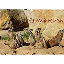 Erdmännchen (Wandkalender 2017 DIN A3 quer): Eine putzige Erdmännchenfamilie (Monatskalender, 14 Seiten ) (CALVENDO Tiere)