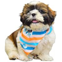 Zoivane Bandanas for Dogs | Dog Accessories for Puppy | Scarf, Gift, Clothes for Dogs Pack of 1