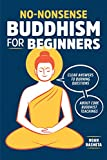 No-Nonsense Buddhism for Beginners: Clear Answers to Burning Questions About Core Bud...
