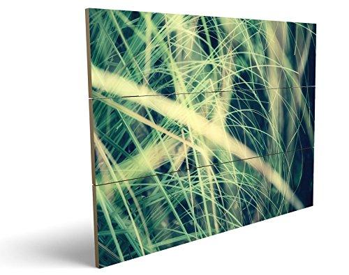 Grashalme, qualitatives MDF-Holzbild im Drei-Brett-Design mit hochwertigem und ökologischem UV-Druck Format: 100x70cm, hervorragend als Wanddekoration für Ihr Büro oder Zimmer, ein Hingucker, kein Leinwand-Bild oder Gemälde