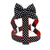 #4: That Dog In Tuxedo Huckleberry Dog Bowtie Bow Tie Harness - Beatles (M)