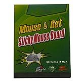 Takestop - Cuaderno único divisible en 6 trampas adhesivas de 8 x 6,5 cm en tabla con pegamento para ratones, ratas, insectos y reptiles