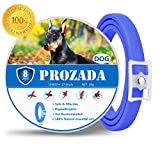 PROZADALAN Flea and Tick Collar for Dog Waterproof, 8 Month Effectiveness Natural Dog