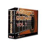 Acoustic Guitars Vol. 1 - 128 Acoustic Guitar Licks [DVD non Box]