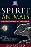 Spirit Animals: How to Identify and Connect with Your Animal Guide (Totem Guides Book 1)