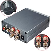 Mini Digital Power Amplifier HiFi TPA3116 Stereo Output 2.0 Channel 100WX2