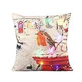sunnymi Neue LED Kissenbezug Weihnachten Pillowcase 45 * 45cm Farbe Lichter Weihnachtskissen LED Lichter Kissen Kreatives Drucken Leinen (B, Mehrfarbig)