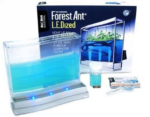 antquarium-super-forest-mit-led-beleuchtung-set-ameisenfarm-neuovp