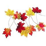 Natürliche Ahornblattfeiertagsschnur führte das Licht, das durch AA-Batterie angetrieben wurde, mehrfacher Herbst-Ahornblatt-Girlandenraum / -party dekorativ