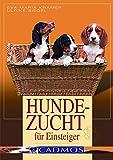 Hundezucht für Einsteiger: Vorbeugen - Helfen - Heilen (Cadmos Hundepraxis) - Cadmos Verlag