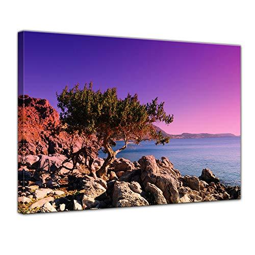 Wandbild - Mediterraner Baum auf Rhodos - Griechenland - Bild auf Leinwand auf 40 x 30 cm Landschaften Europa - violetter Sonnenuntergang über dem Mittelmeer