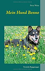 Mein Hund Benno: Tierische Begegnungen