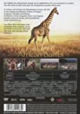 African Bambi - Die wahre Bambi Story (DVD)