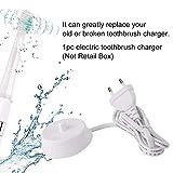 Electric Toothbrushes Braun