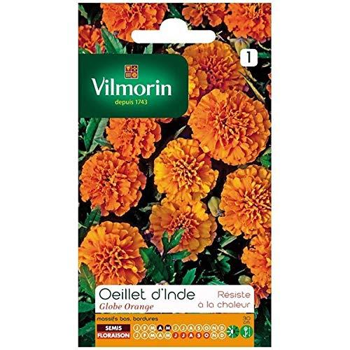 Vilmorin - Sachet graines Oeillet d'Inde Globe orange