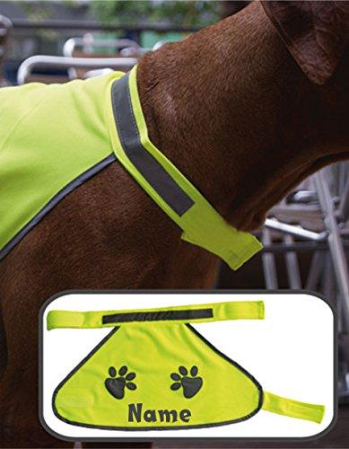 Hundewarnweste Sicherheitsweste für den Hund Warnweste mit Namen Reflektordruck verschiedene Größen S, M, L (M)