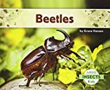Beetles (Abdo Kids: Insects)