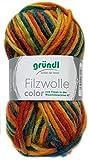 Gründl Filzwolle Color 50g (Orange Oliv Moos 36)