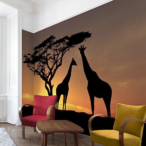 Apalis Vliestapete African Sunset Fototapete Breit | Vlies Tapete Wandtapete Wandbild Foto 3D Fototapete für Schlafzimmer Wohnzimmer Küche | orange, 94882 (Fotos African)