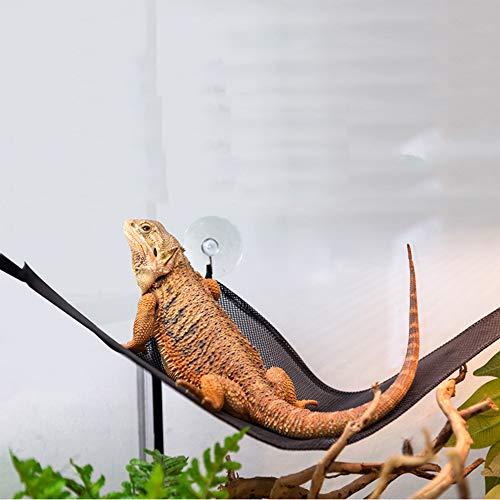 ZDJR Reptile Hammock Lizard Liege, Mesh-Saugnäpfe, Outlet für interessante Aktivitäten für Amphibien, Robustes Design
