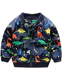 Abrigo Caliente Bebé, Internet Niños Dinosaurios Impresión Cremallera Chaqueta Lindo Dinosaurio Bebé Abrigos Ropa De Niños
