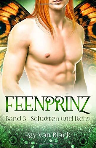 Feenprinz - Band 3: Schatten und Licht - Gay Fantasy (Feenprinz-Reihe)