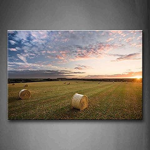 Mow en Prairie Décoration murale Peinture la photo sur toile