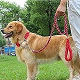 MK Hundeleine und Halsband/Pet Training Bleihalsband/Anti-Pull-Anti-Biss Hundeleine und Halsband (S(250mm-350mm), Rot)