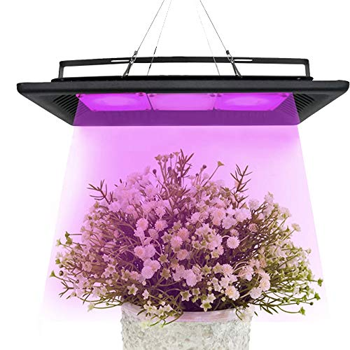 DASKOO PL-05 150W IP67 Wasserdicht Full Spectrum Plant Growth Light COB Lichtquelle AC 170-300V 12000LM für Gewächshaus und Wasserkultur Zimmerpflanzen Veg und Blumen
