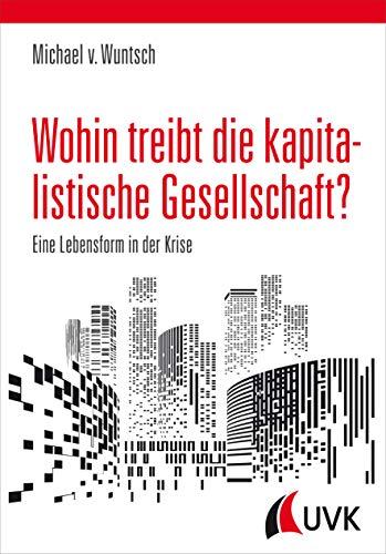 Wohin treibt die kapitalistische Gesellschaft?: Eine Lebensform in der Krise