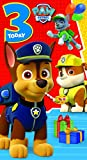 Paw Patrol Time to Party Greeting Card