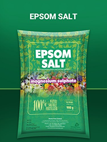 DIVINE TREE Epsom Salt Magnesium Sulfate for Speed Up Plant Growth Vegetables & Plants Nutrient – 900 Gm