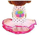 Kleine Hunde Kleidung Mode Kleidung Prinzessin Kleid Cherry [Pink]