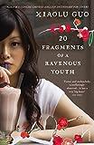 Image de 20 Fragments of a Ravenous Youth