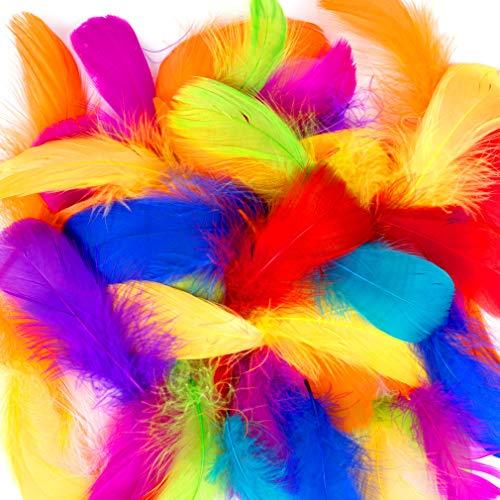 500 pcs Plumas Manualidades De Colores Plumas de la decoración para Las Decoraciones caseras del Partido de la Boda del Arte de DIY, Plumas de Ganso,7-12 cm(E-500PCS)