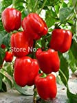 100 Seeds/pack Red Sweet Pepper Seeds vegetable seedsHigh budding rate fast growth free shipping