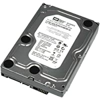 Western Digital RE3 1 TB SATA 3GB/s,