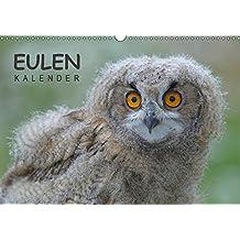 Eulen-Kalender (Wandkalender 2019 DIN A3 quer): Faszinierende Portraits und Flugaufnahmen europäischer Eulen (Monatskalender, 14 Seiten ) (CALVENDO Tiere)