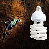 Bargain World 220v UVB reptil lámpara de calcio blanco cerámica emisor de luz fluorescente de cría calienta la lámpara de vivero
