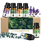 Ätherisches Öle, GLAMADOR Ätherische Öle Set (6x10ml), Duftöl für Essential Oil für Aromatherapieiffuser, 100% Rein Öle, Ätherische Öle Für Diffuser