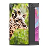 Stuff4 Coque de Coque pour Sony Xperia XA Ultra/F3212/F3216 / Girafe Design/Animaux Sauvages Collection