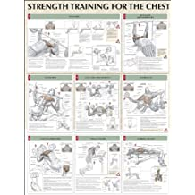 Chest Poster